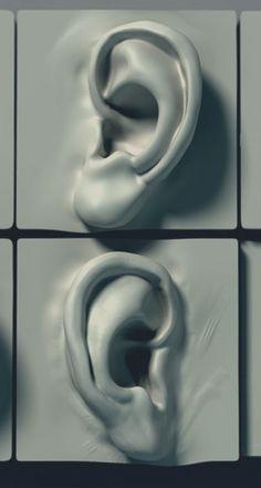 oren gelijk talloren